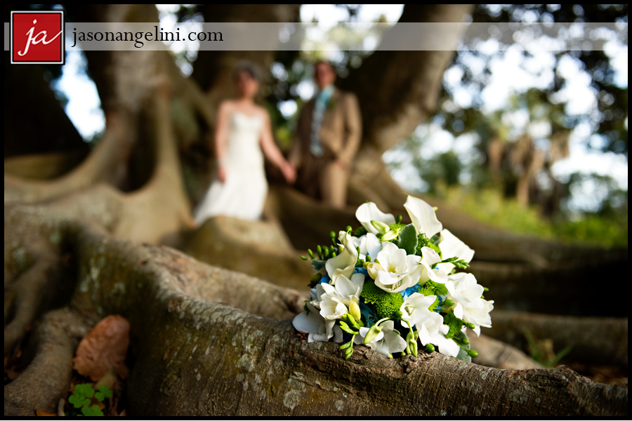 Wedding At The Marie Selby Botanical Gardens Michelle And Eric Jason Angelini Photography